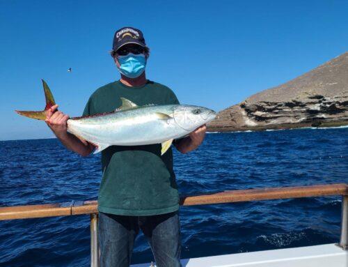 April 25  (Full day) Coronado Island