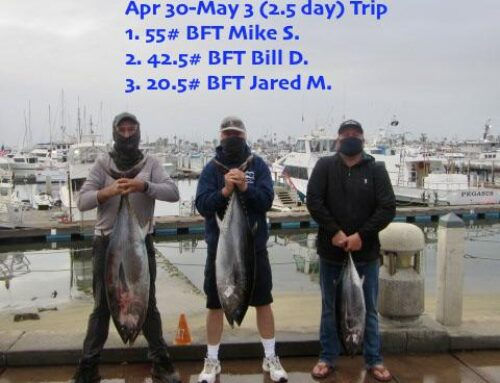 Apr 30-May 3 (2.5 day) Offshore trip