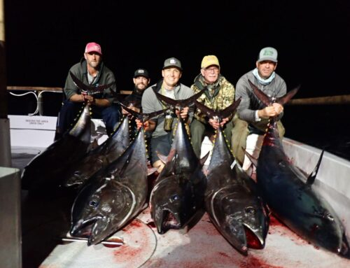Sep 16 (3.5 Day Trip) Private Charter with Matt Boone